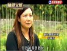 青年創業及圓夢網-影音專區-茭白筍觀光農園 中年婦創業成功